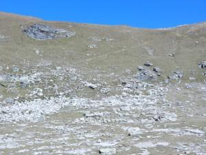 Davanti a noi, la traccia di sentiero che sale verso la cresta